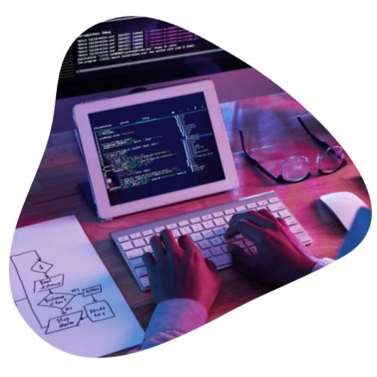 Programmering af specialløsninger